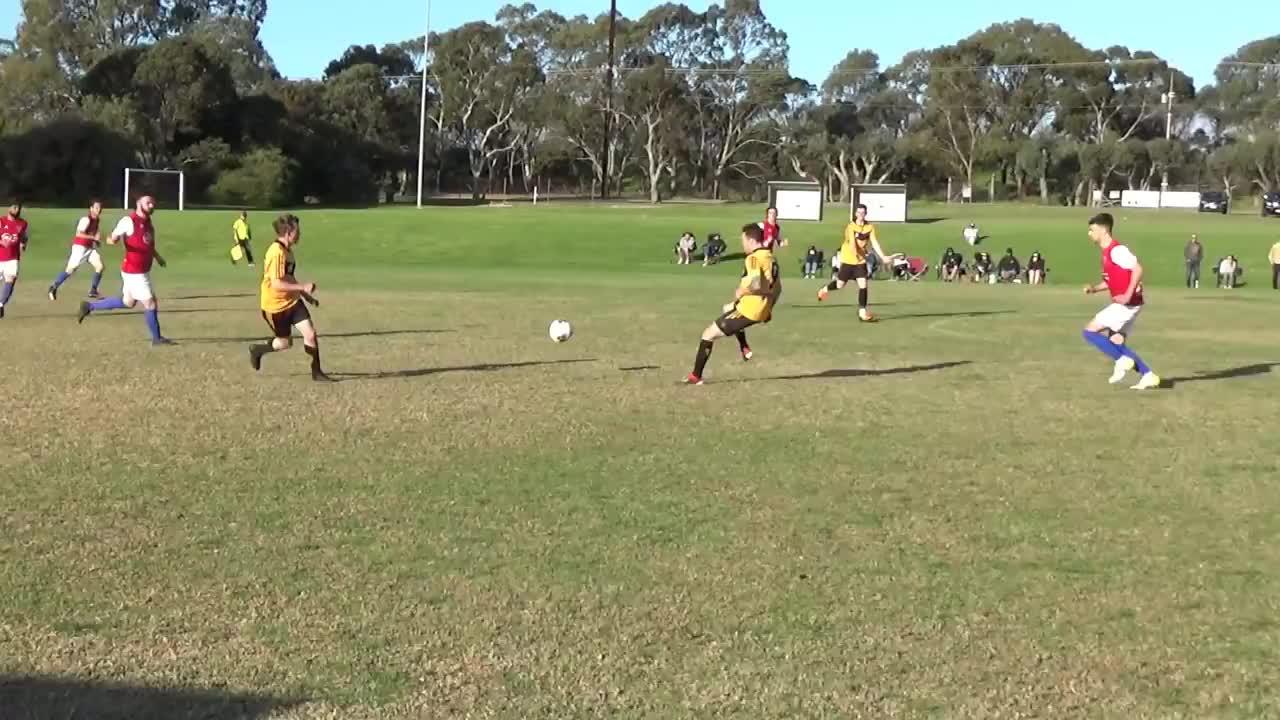 裁判向同一支球队教练和球员出示7张红牌