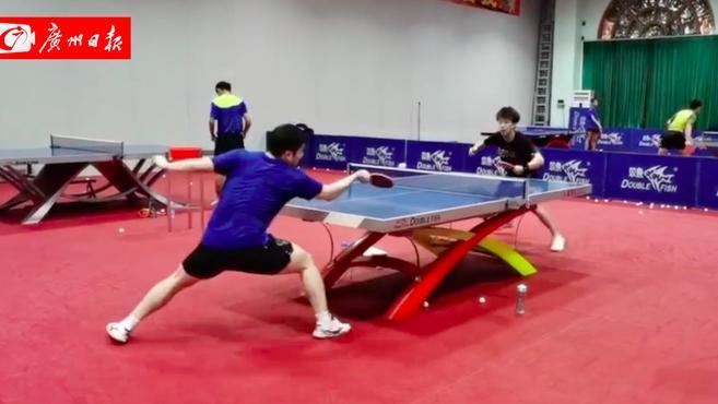 视频 全运会乒乓球开赛倒计时,樊振东与广东男乒训练挥汗如雨