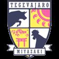 特格瓦嘉洛宫崎