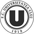 克卢日大学