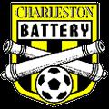 查勒斯顿电池